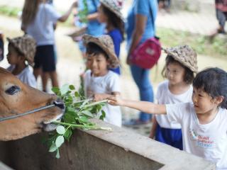 Kids Farm Activities