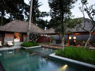 Deluxe Private Villa Pool