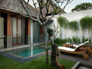Deluxe Villa - Hot Water Plunge Pool