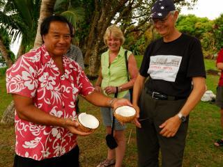Island Discovery Tour