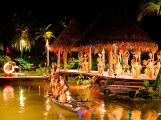 Overwater Night Show