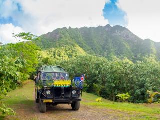 Raro Safari 4WD Inland Tour