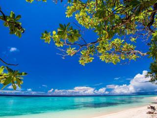 Conflict Islands Pansesa Back Beach