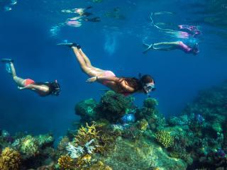 Captain Cook Fiji_Snorkel