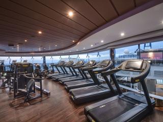 Meraviglia_gym