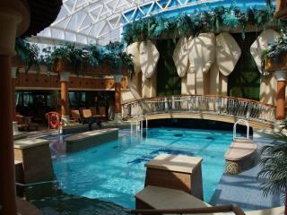 RCI_RD_Solarium Pool