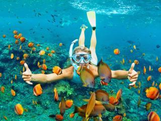 snorkel Freeport