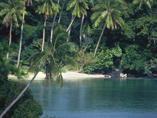 Taveuni Island Resort & Spa Secluded Beach