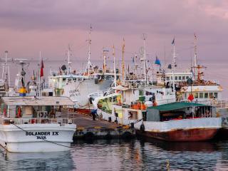 Suva, Fiji, Harbour, Suva Harbour