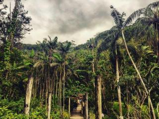 Discover Nadi Explore West Tour