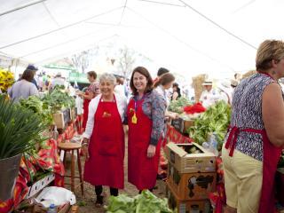 Blog - Generic - Felton Food Festival