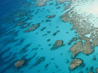 Deluxe Reef Explorer ex Port Douglas