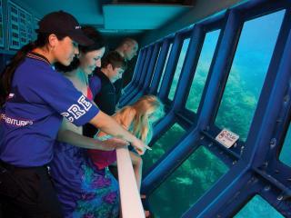 Reef Tour - Underwater Observatory