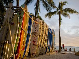 Hawaii - Waikiki Beach Surfboards - Cruise