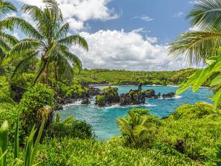 Blog - Generic - Waianapanapa, Maui