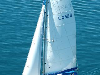 Blue Dolphin Tour Vesel