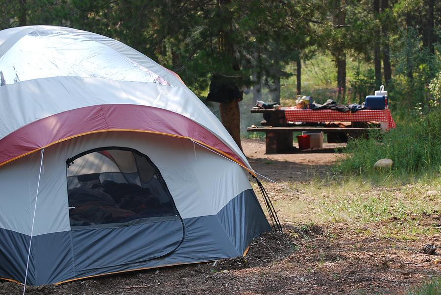 Fraser Island Formal Camping Areas