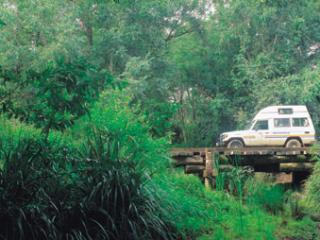 Fraser Island 4WD