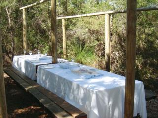 Lunch setting at Lake McKenzie