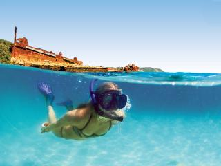 Snorkel Moreton Island
