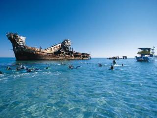 Tangalooma Wrecks Moreton Island Tour