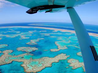 Reef Adventure Flight