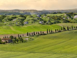 Siena Farmhouse and Countryside