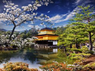 Kyoto, Gold Temple (Golden Pavilion) Japan