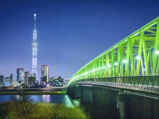 Tokyo Skyline with Tokyo Skytree, Japan