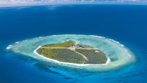 Lady Elliot Island 4 Night Reef & Rainforest Package