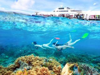 sunlover reef cruises-arlington reef tour great barrier reef cairns