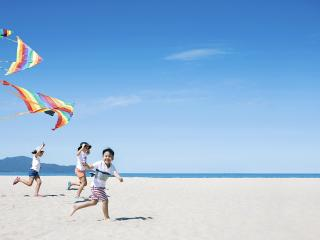 Kite Flying on Beach