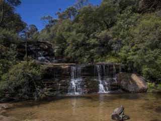 Wentworth Falls in Blue Mountains - Destination NSW