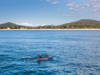 Nelson Bay, Port Stephens - Destination NSW