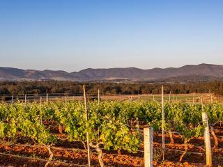 Hunter Valley - Destination NSW