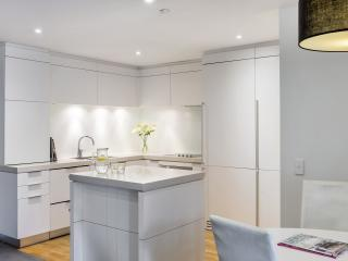 2 Bedroom Lakeview Apartment - Kitchen