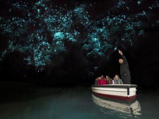 Waitomo Glowworms Express