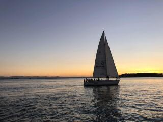 Auckland Dinner Cruise