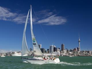 Harbour Sailing Cruise