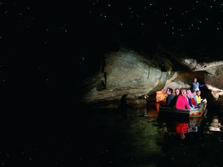 Te Anau Glowworms Caves