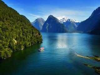 Milford Sound Coach & Nature Cruise