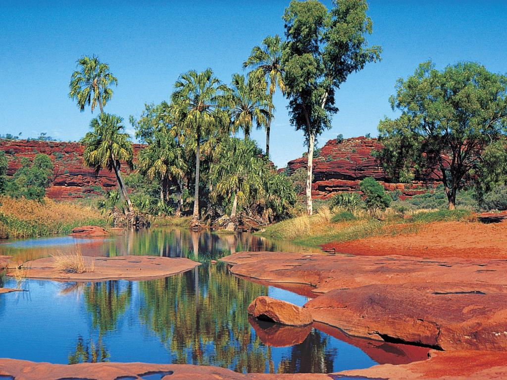 Palm Valley Outback Safari By 4wd