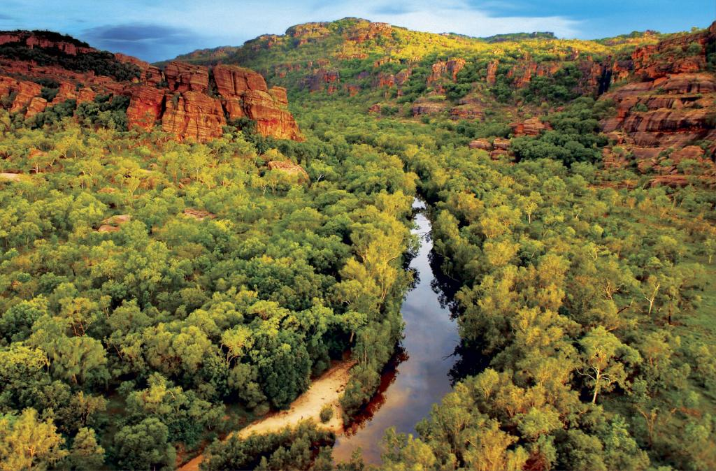 Travel Packages For National Park Tours