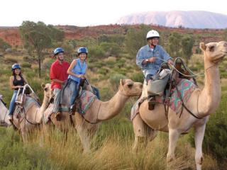 Ayers Rock Camel Tour