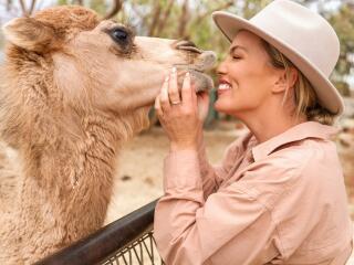 Camel Tours - Tourism NT - Backyard Bandits