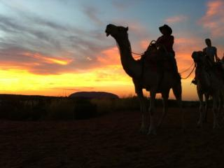 Sunrise Camel Tour