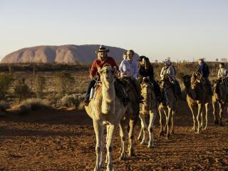 Uluru Camel Sunrise Tour - Tourism NT - Helen Orr