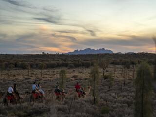 Camel Tour - Tourism NT - Rhett Hammerton
