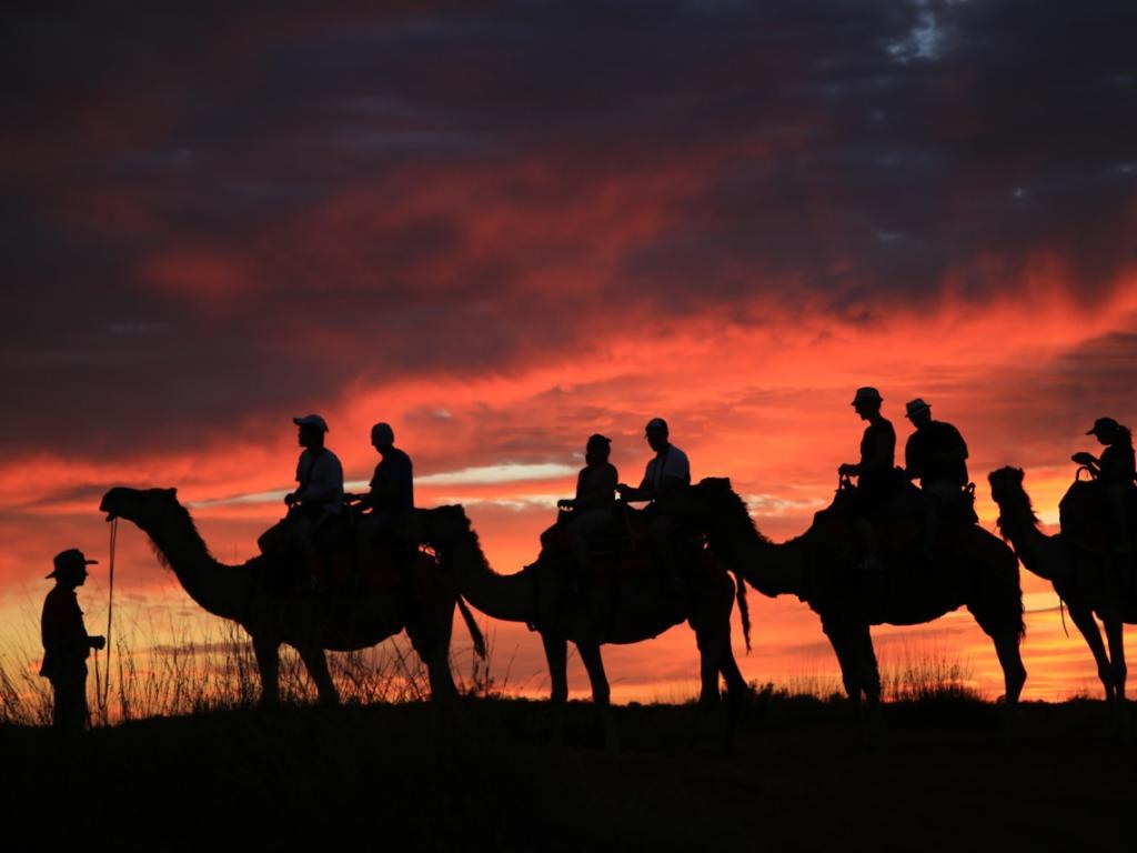Sunset Camel Tour