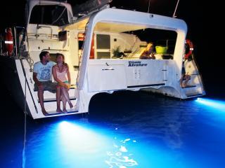 Whitsunday Adventurer - Night time blue lights